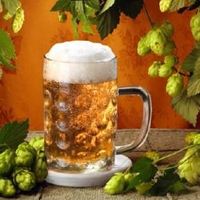 Приготовление пива в домашних условиях. Самый легкий способ.(видео)
