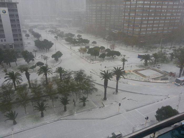 Анекдот дня — в Африке выпал снег.