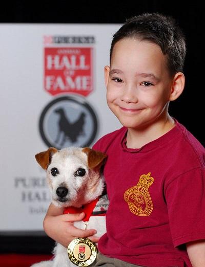 Настоящая дружба. Мальчик решил выполнить желания своей умирающей собаки.