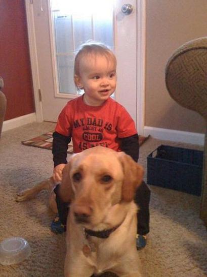 Настоящая дружба или собака друг человека.