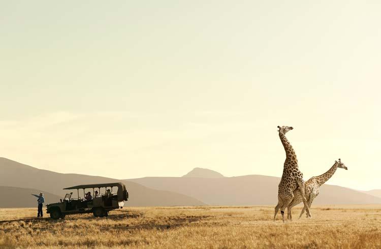 Смешные и абсурдные фотографии от Зака Секлерса