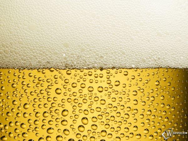 Как получить бесплатное пиво, ничего при этом не делая…. 3 минуты? Отличное развлечение среди напряженного дня