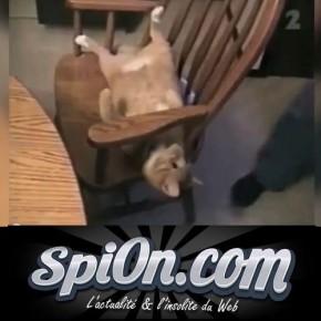 Видеоприколы от Le Zap De Spion № 181