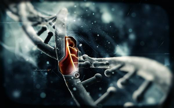 Сила нанотехнологий. Чудеса в одном видео.