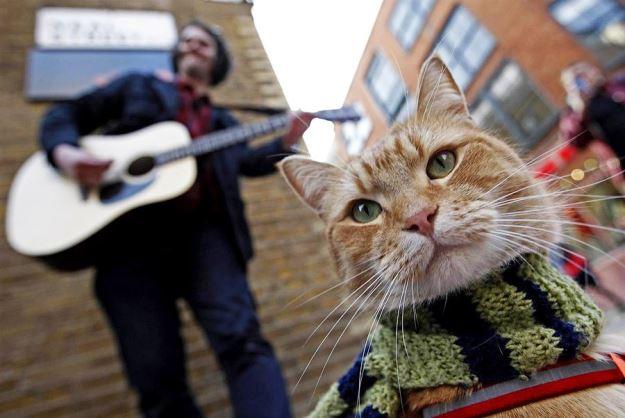 Джеймс и Боб — Лондонские музыканты!