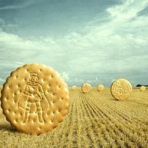 Самые обычные креативные иллюстрации и печенье на поле