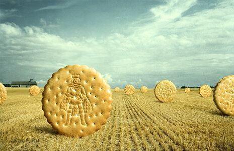 Самые обычные креативные иллюстрации и печенье в поле