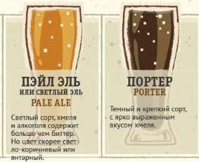 Основные сорта пива и их признаки.
