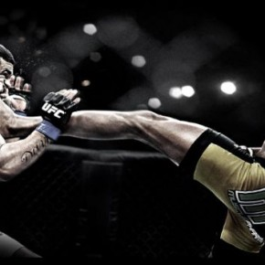 Топ 10 самых зрелищных моментов боев без правил UFC за 2012 год
