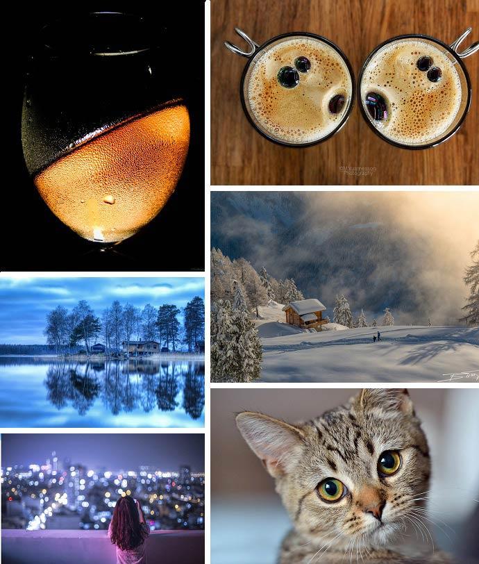 20 лучших фотографий января