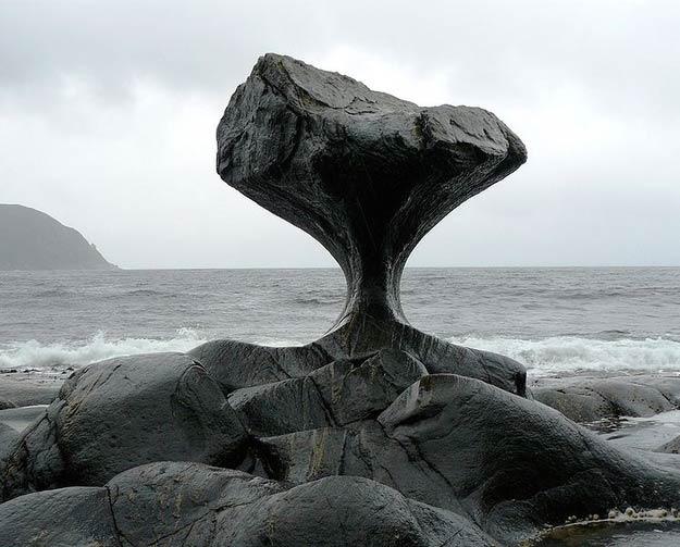 Сделано не человеком: сюрреалистические шедевры, созданные природой