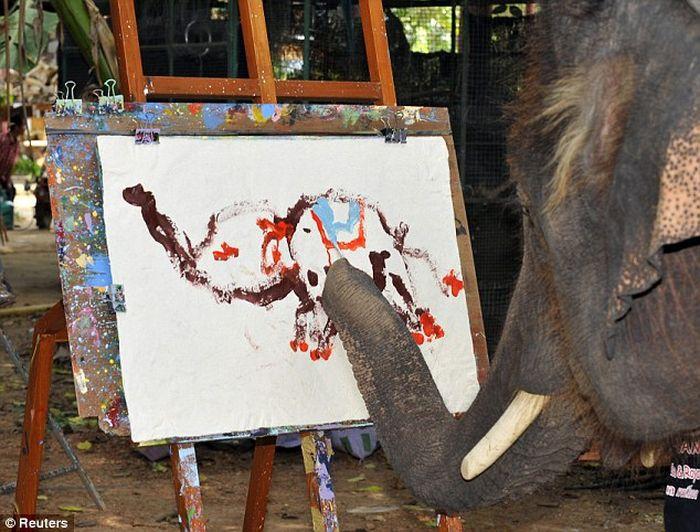 Слон рисует картины. Фото+Видео