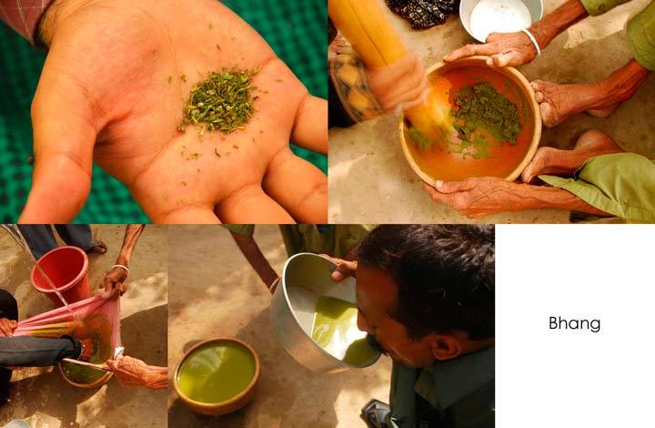 Простой рецепт «Бханг-ласси» — национального алкогольного напитка Индии с выжимкой из марихуаны.