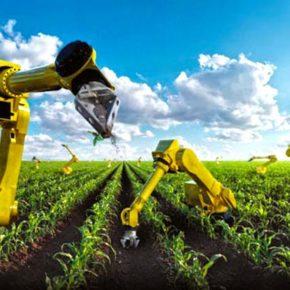 Япония создаст роботов-фермеров для развития сельского хозяйства.