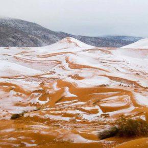 Картина года: в пустыне Сахара впервые выпал снег за последние 37 лет.
