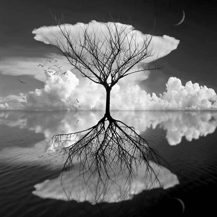 Черно-белые сюрреалистические работы от Марка Варда.