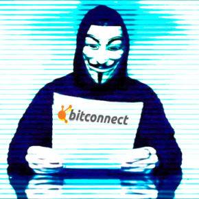 100 долларов за 15 дней: как OFFICEPLANKTON лендил в криптовалюту Битконнект