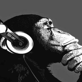 Как по нотам: 10 художественных книг о музыке и музыкантах