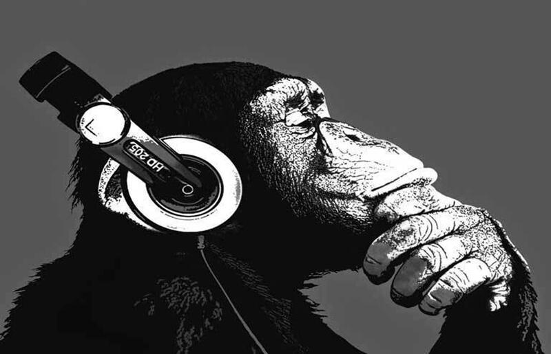 Как по нотам: 10 потрясающих книг о музыке и музыкантах